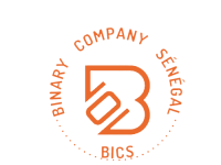 Binary-company-Sénégal